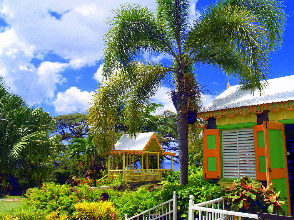 york s st kitts taxi and tours